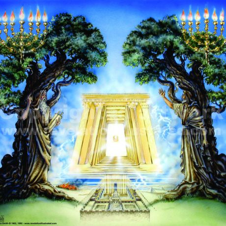 16 Two Witnesses